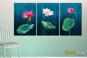 Tranh hoa sen HS01
