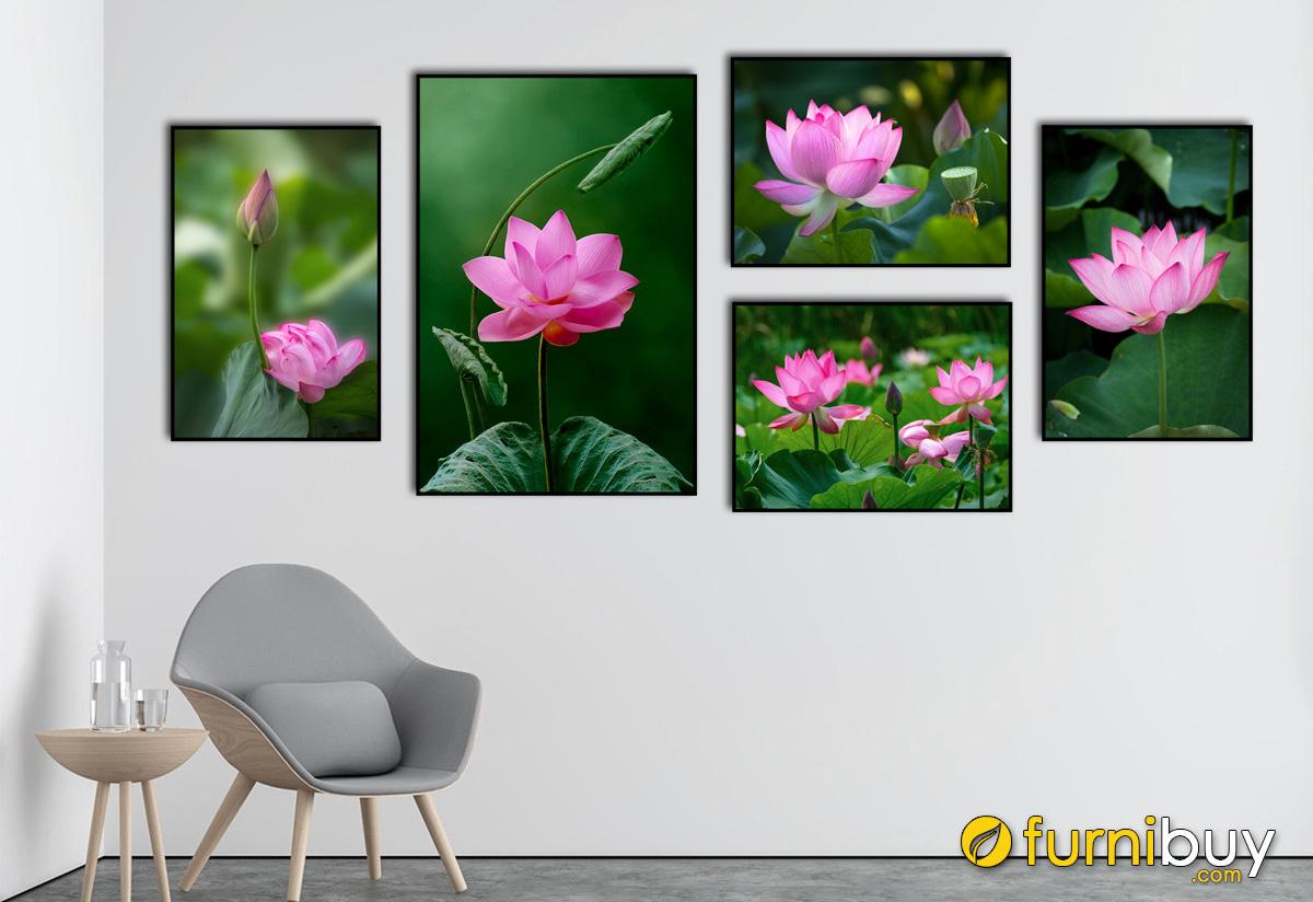 Hình ảnh Bộ tranh hoa sen 5 tấm treo tường in vải canvas đẹp hiện đại