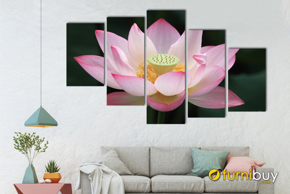Hình ảnh Tranh bông hoa sen màu hồng ghép bộ 5 tấm