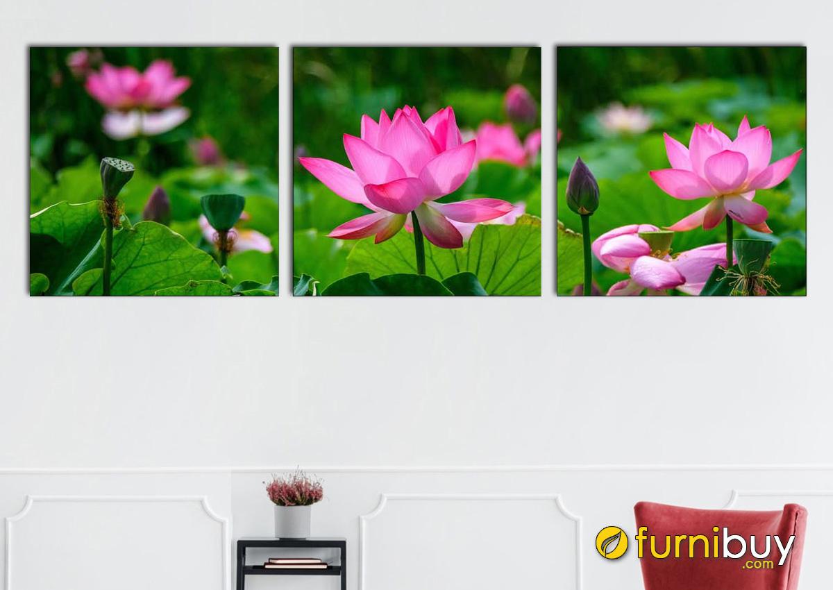 Hình ảnh Tranh treo tường hoa sen ghép bộ 3 tấm in ép gỗ