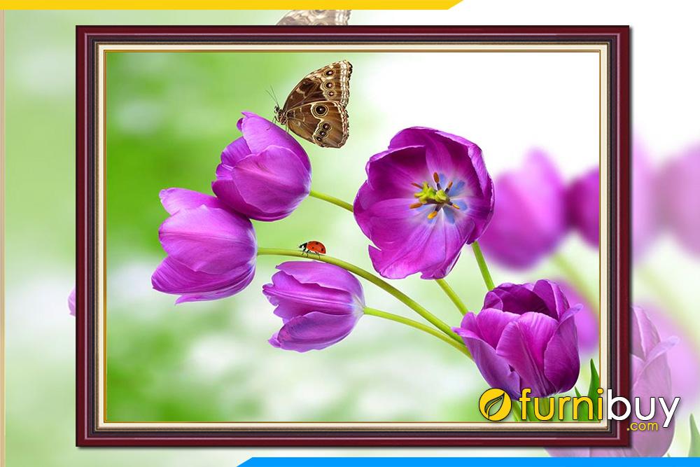 Tranh phong canh thien nhien hoa tulip mua xuan amia 345