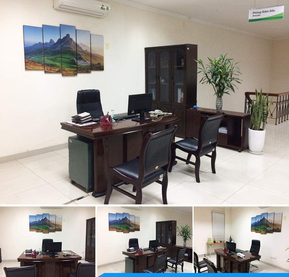 Hình ảnh thực te tranh cho giam doc menh tho phong canh nui doi