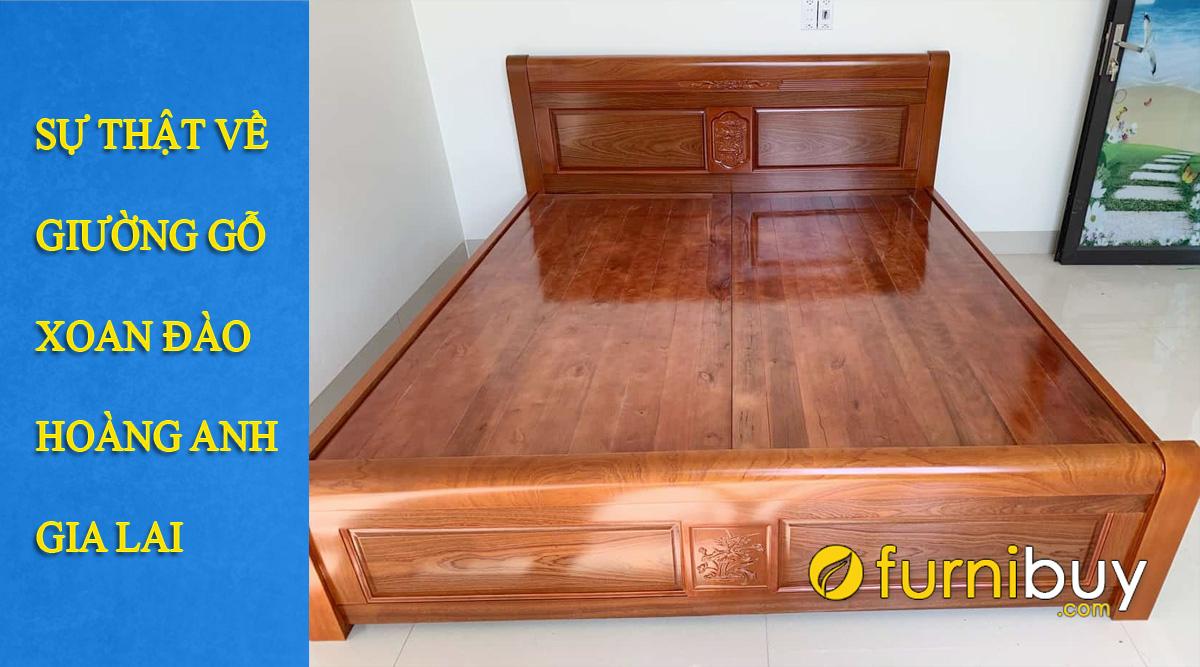 giường gỗ xoan đào hoàng anh gia lai mua ở đâu giá bao nhiêu