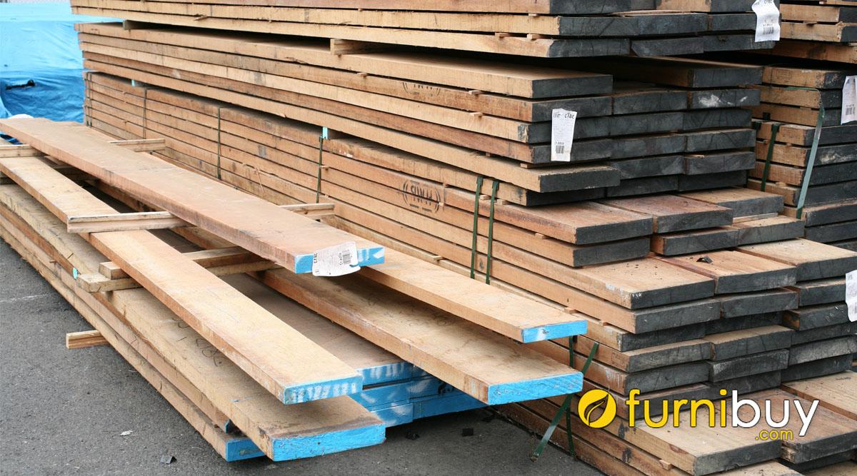 gỗ dẻ gai có bị mối mọt hay không