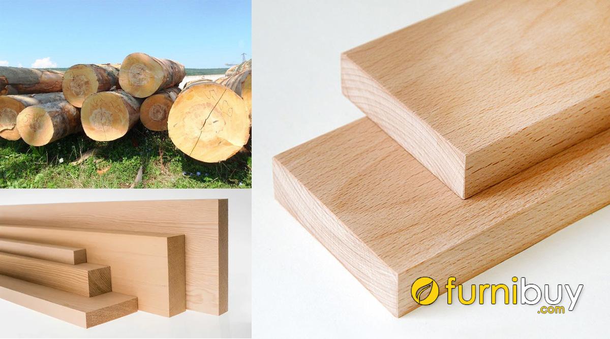 ưu nhược điểm của gỗ dẻ gai beech sử dụng trong nội thất