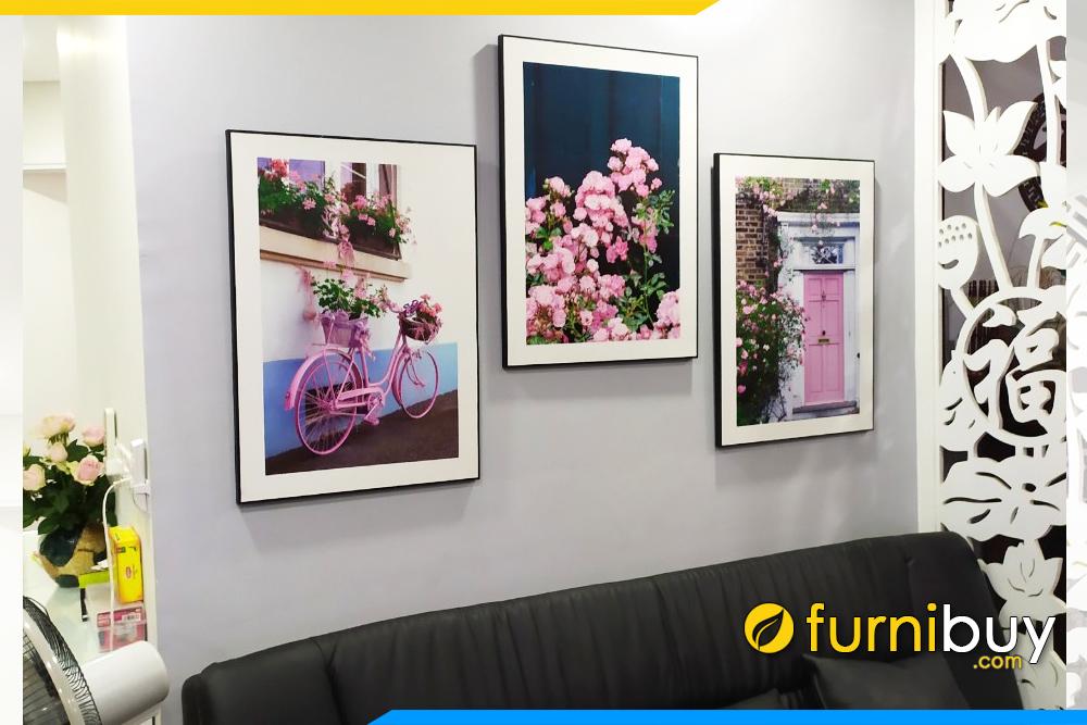 Tranh canvas 3 tam hoa hong treo tren ghe sofa chung cu