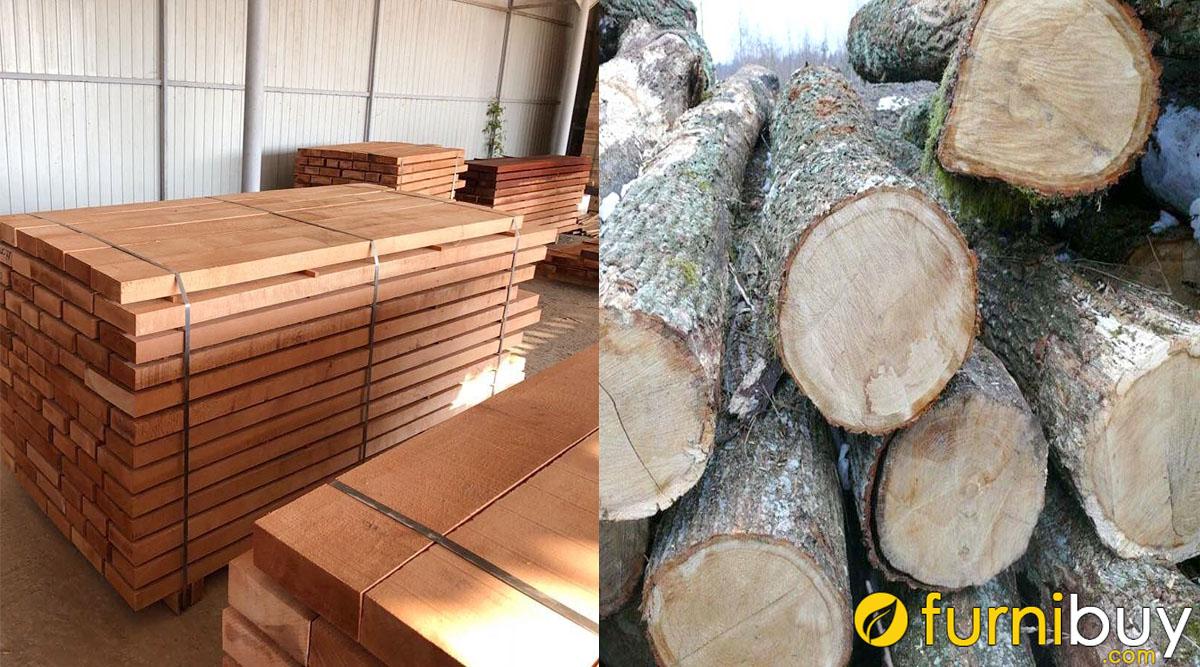 gỗ sồi đóng sofa có tốt không