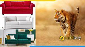 Chọn sofa phòng giám đốc tuổi canh Dần hợp mệnh