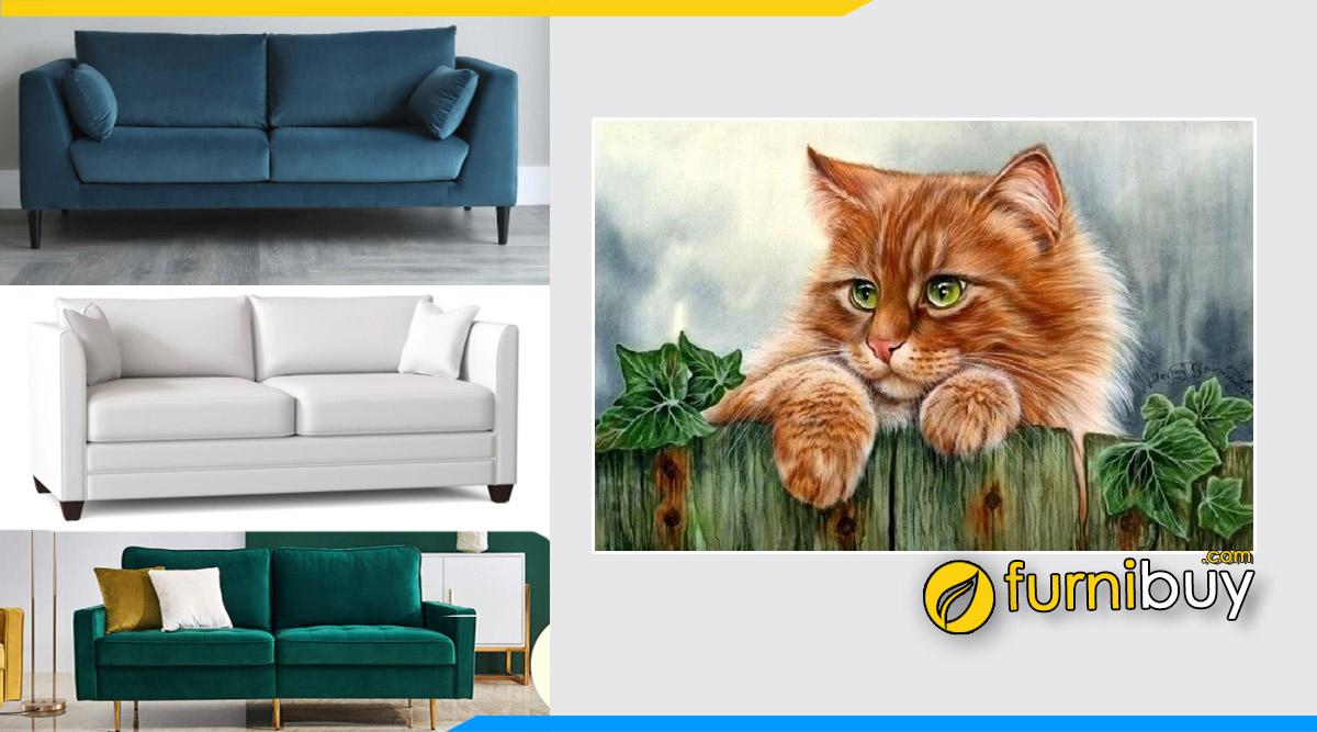 Furnibuy tư vấn chọn sofa phòng giám đốc tuổi Mão hợp phong thủy