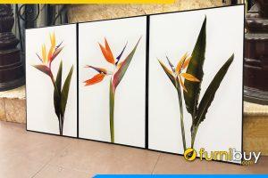 Tranh canvas hoa thien dieu treo tuong 3 tam